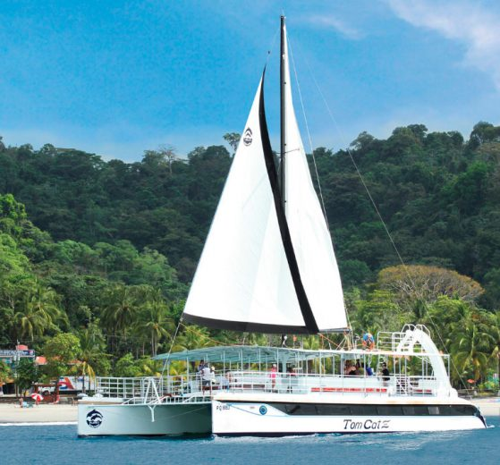 Manuel Antonio Park Tour Mangrove Boat Tour Mangrove Kayak Tour Night Mangrove Boat Tour Rainmaker Park Tour Night Jungle Tour Nauyaca Waterfalls Tour Quetzal Bird Watching Tour